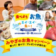お魚キャンペーン